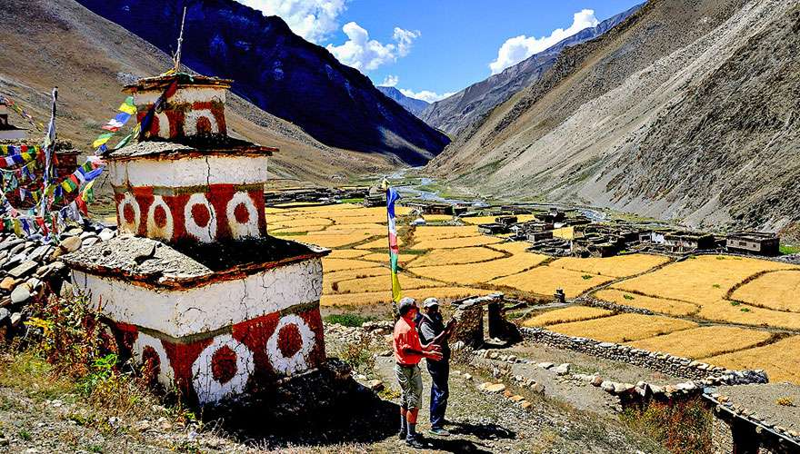 Dolpo village and barley field