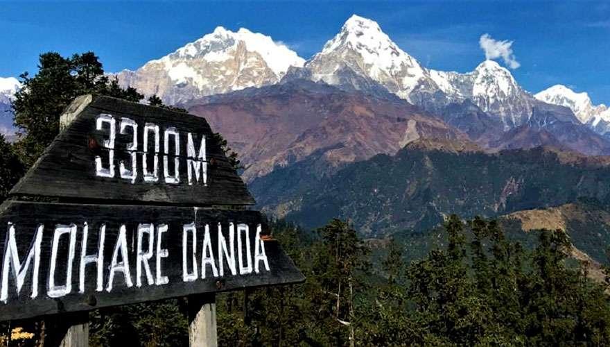 Mohare Danda at the altitude of 3300 meter