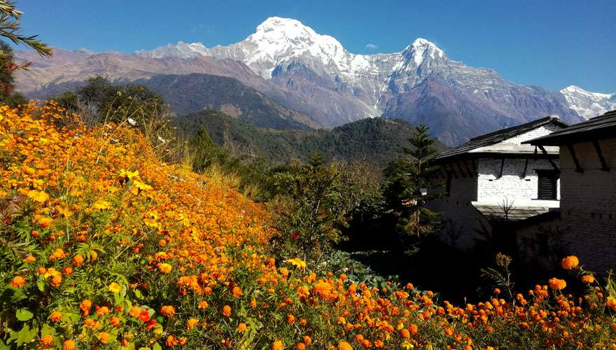View from Himalaya Lodge at Ghandruk
